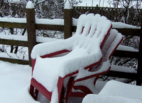 Have a Seat: Dec. 29